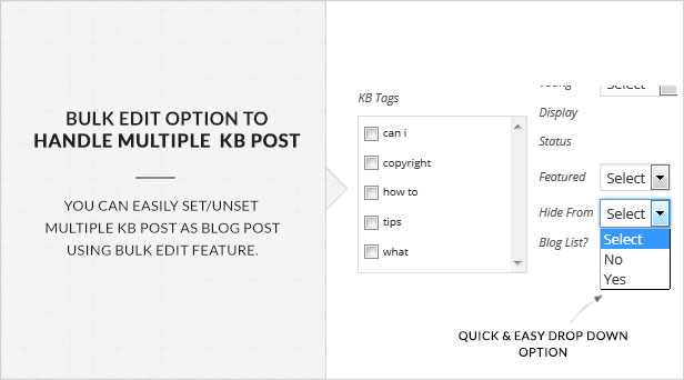 KB Display As Blog Post - Knowledge Base Addon 15